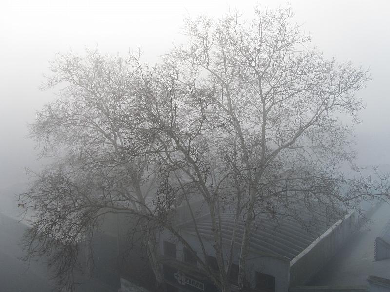 Туман в Монтевидео